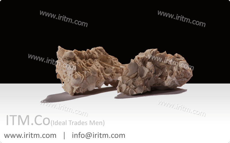 Mineral Oyster
